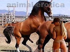 Huge stallion in passion with very horny beauty